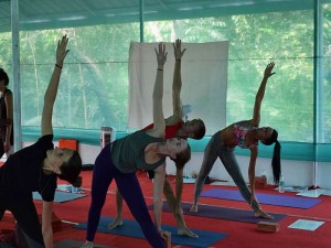 Ashtanga Yoga Workshop in Varkala